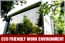 Eco Friendly Work Environment | Suntec Energy Systems